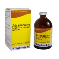 Norbrook Adrenacaine Solution for Injection 100ml
