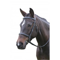 Kincade Raised Cavesson Bridle - Pony