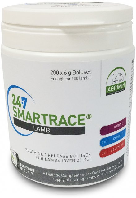 24-7 SMARTRACE LAMB PK200