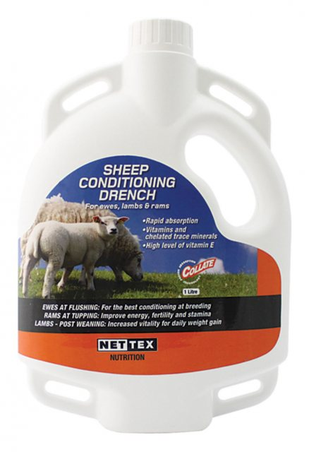Nettex NETTEX SHEEP CONDITIONING DRENCH