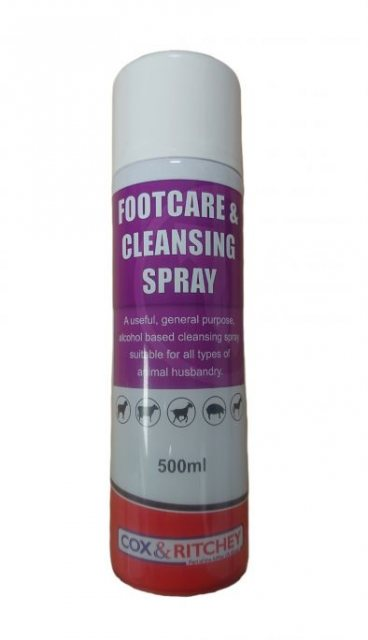 FOOTCARE & CLEANSING SPRAY 500ML